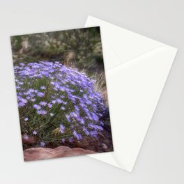 Wildflowers at Capitol Reef Stationery Cards