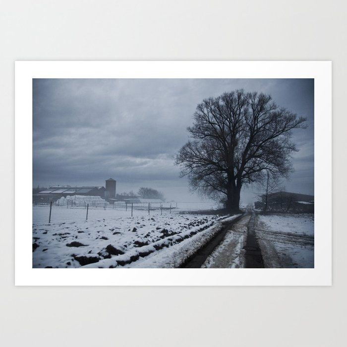 Foggy winter day II Art Print