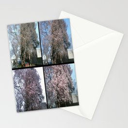 Tree Blossoms Stationery Cards