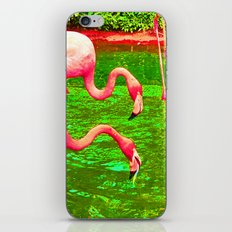 Flaming Flamingo iPhone Skin