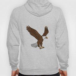 Bald Eagle Flying Drawing Hoody
