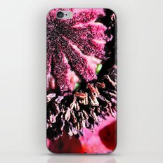 Poppy Close Up iPhone & iPod Skin