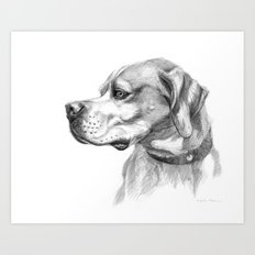 Pointer Dog Portrait G037 Art Print