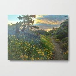 Wildflower Hike at Dusk Metal Print