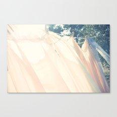 clothes hanging Canvas Print