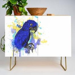 Hyacinth macaw Hymie Credenza