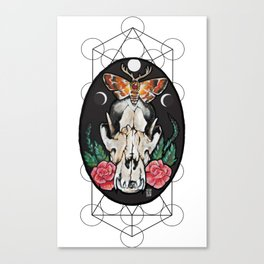 Death from above. Canvas Print