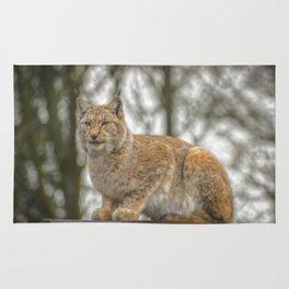 Lynx. Rug