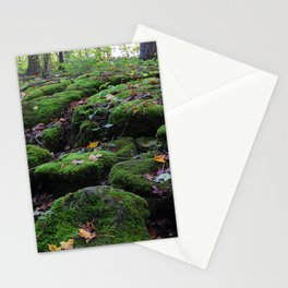 Adventure in the forest Stationery Cards