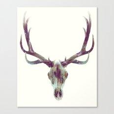 Elk Skull Canvas Print