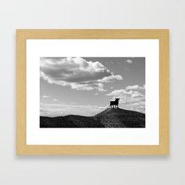 Osborne bull Framed Art Print