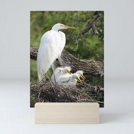 Snowy Egret Family Mini Art Print