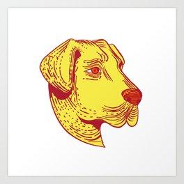 Anatolian Shepherd Dog Head Etching Color Art Print