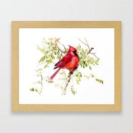 Northern Cardinal, cardinal bird lover gift Framed Art Print