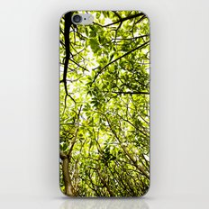 Verde iPhone & iPod Skin