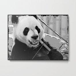 Panda Bear Munchies Metal Print