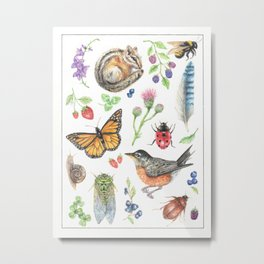 Flora and Fauna of Summer Metal Print