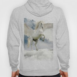 Magic Unicorn Hoody
