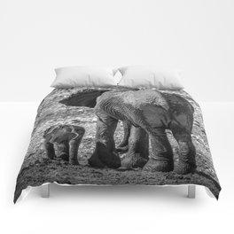 B&W Elephant Love 4 Comforters