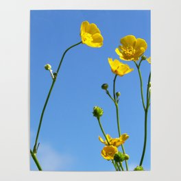 Build Me Up Buttercup Poster