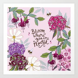 Bloom Where You Are Planted, Sweet Williams Art Print