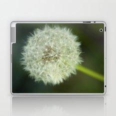 Make a Wish Laptop & iPad Skin