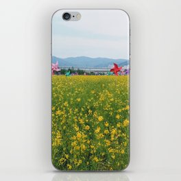 Rapeseed yellow flowers in Busan iPhone Skin
