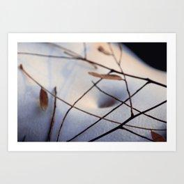 cold breeze Art Print