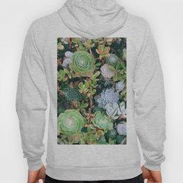 Succulents Green Garden Hoody