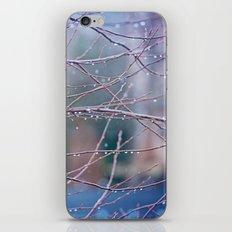 spring rain iPhone & iPod Skin