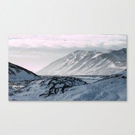 Speckled Rocks Canvas Print