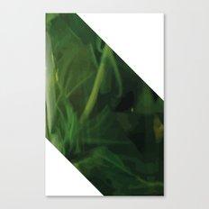 Mintz Canvas Print