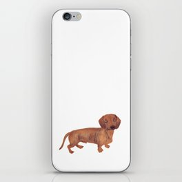 Dachshund Sausage dog iPhone Skin