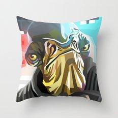 SW#77 Throw Pillow