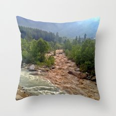 Good and Bad things come together Throw Pillow