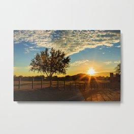 Sunset Through The Tree Metal Print