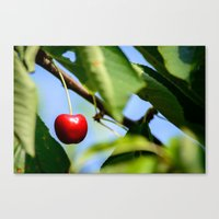 cherry Canvas Prints featuring cherry by hannes cmarits (hannes61)