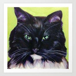 Fluffy Black Kitty Art Print