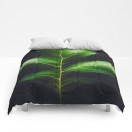 The Leaf (Color) Comforters