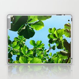 Sublime Laptop & iPad Skin