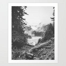 INTO THE WILD XXII / Washington Art Print