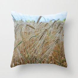beautiful barley field Throw Pillow