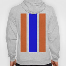 TEAM COLORS 10....ORANGE AND BLUE Hoody