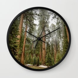 Sequoias in the Fog Wall Clock