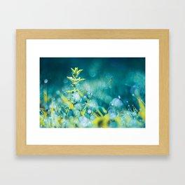 Crystal Fairies Framed Art Print