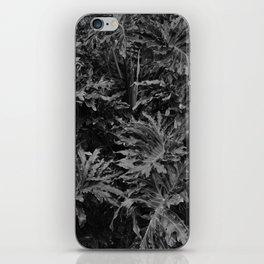 leavs iPhone Skin