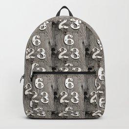 6 over 23 Backpack