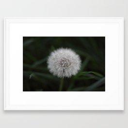 Pissenlit Framed Art Print