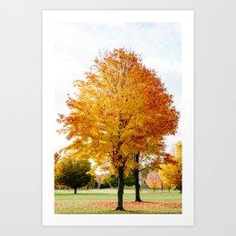 Fall Drive 001 Art Print
