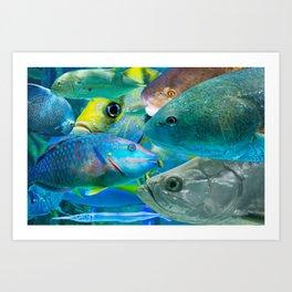 Fish Collage #1 Art Print